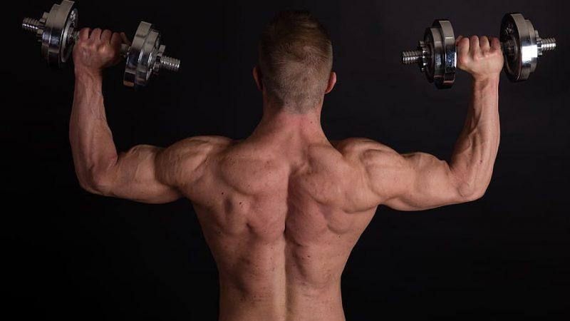 Comment prendre de la masse musculaire ?