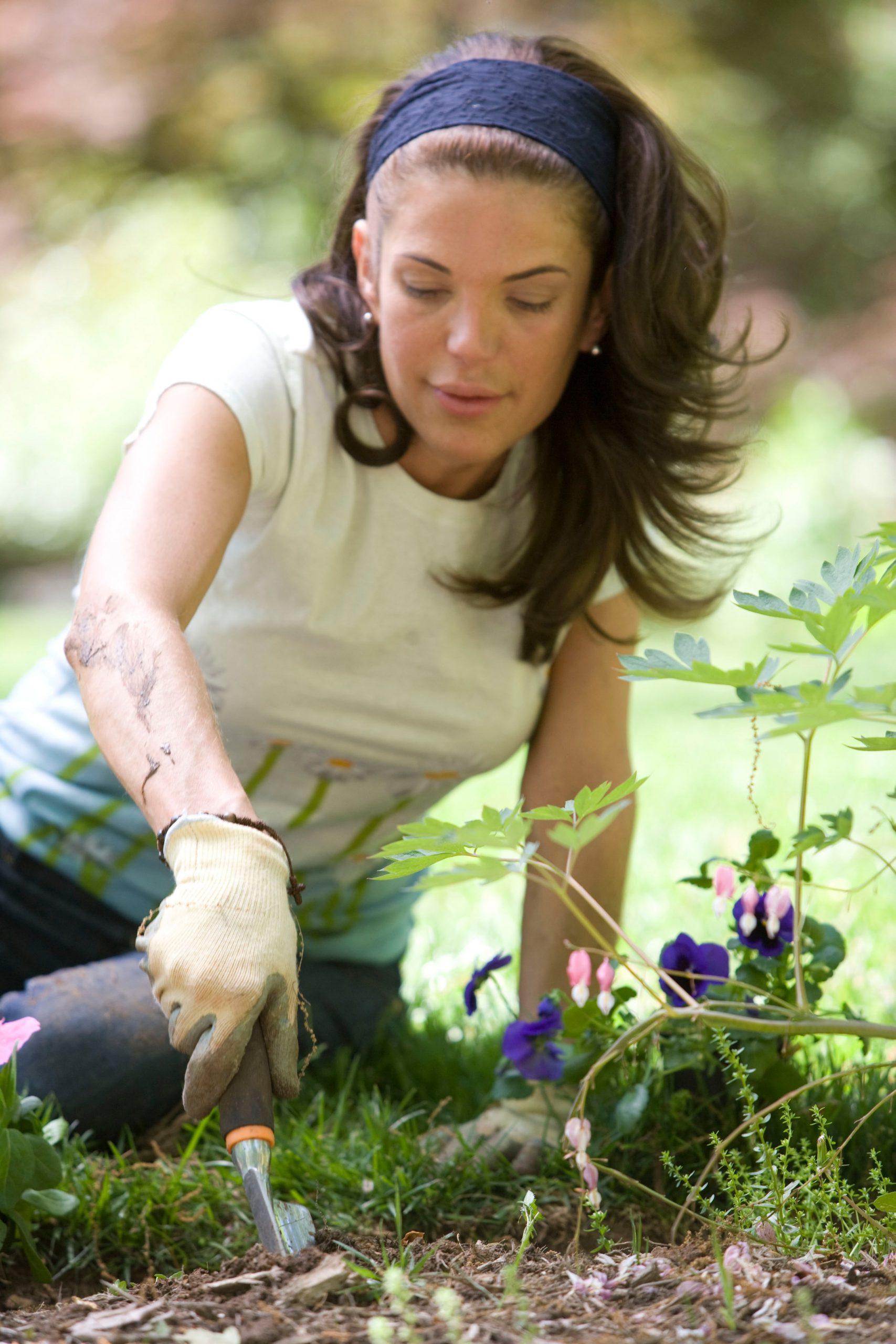 Quels sont les outils indispensables pour bricoler et jardiner ?